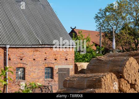 Ein altes Bauernhaus ist neu mit Reed gedeckt - Stockfoto