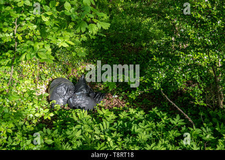 Müllsäcke liegen achtlos in den Wald geworfen - Stockfoto
