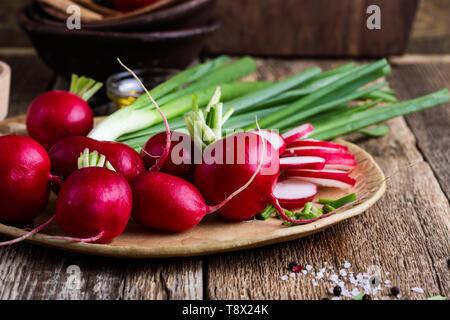 Frischen Frühling Radieschen, Frühlingszwiebeln und Knoblauch auf rustikalen Holzmöbeln Hintergrund, auf Basis pflanzlicher Lebensmittel Zutaten zum Kochen, Nahaufnahme, selektiver Fokus