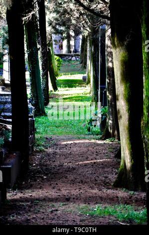 Einen Pfad unter Gras und Bäume in einem schmalen Durchgang zwischen Gräbern - Stockfoto