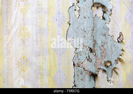 Textur der gelben Tapete blätterte bilden eine Wand auf einer Wand in einem verlassenen Haus - Stockfoto
