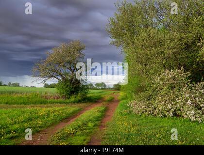 Land straße durch eine ländliche Umgebung. - Stockfoto