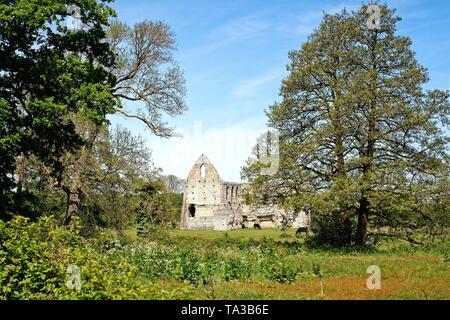 Die Ruinen der Abtei von Newark, ein Augustiner Kloster in der Nähe von Ripley und Pyrford Surrey England Großbritannien - Stockfoto