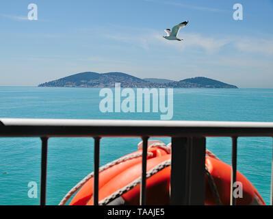 Blick vom Schiff einer Möwe Flug über das Meer und die Insel auf Hintergrund während einer Kreuzfahrt Bosporus, Prinz Inseln, Türkei. - Stockfoto
