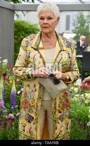 Dame Judi Dench wurde eine Baumkastelme überreicht, um die Wiedererlöung der britischen Landschaft ab diesem Jahr zu starten. Hillier Nurseries, RHS Chelsea Flower Show, Royal Hospital, London. GROSSBRITANNIEN
