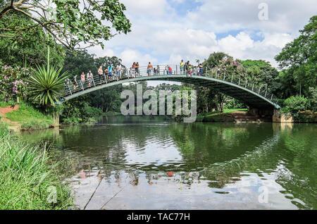 Sao Paulo SP, Brasilien - 02 März, 2019: Gewölbte metall Brücke über dem See der Ibirapuera Park. Brücke bekannt als Ponte Metalica oder Ponte Japonesa. - Stockfoto