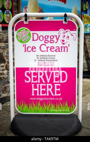 Zeichen außerhalb eines shop Werbung Eis für Hunde zum Verkauf in Boscastle, Cornwall, England, Großbritannien - Stockfoto