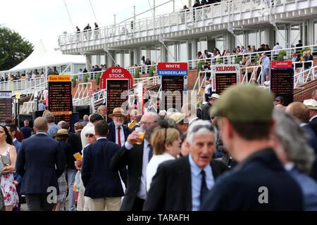 Allgemeine Ansichten von Goodwood Pferderennbahn, Chichester, West Sussex, UK. - Stockfoto