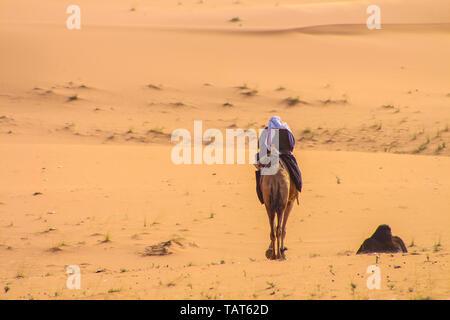 Arabische Hirten auf einem Kamel reiten in der Wüste - Stockfoto