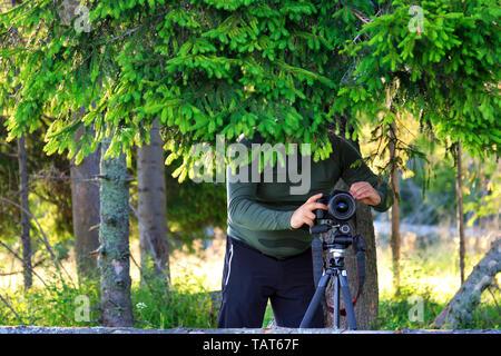 Ein Fotograf wird eine Kamera und versteckt sich im Schatten eines Baumes hinter Zweigen am Waldrand an einem sonnigen Sommertag Fichte. - Stockfoto