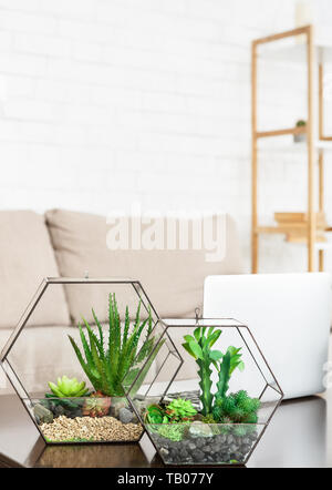 Mini Garten zu Hause Konzept - Stockfoto