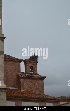 Schönes Nest der Störche in der Belfried von oidor Kapelle an einem regnerischen Tag in Alcala de Henares. Januar 1, 2014. Alcala De Henares, Madrid, Spanien. Straße Foto - Stockfoto