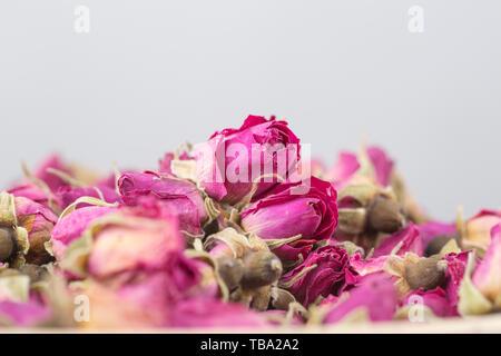Trockene rose Tee - Stockfoto