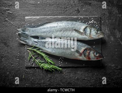 Zwei Fische roh Wolfsbarsch mit Rosmarin. Auf schwarzem Hintergrund im Landhausstil - Stockfoto