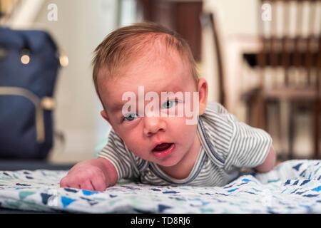 4 Wochen altes Baby junge liegend zu Hause 2 von 4 ...