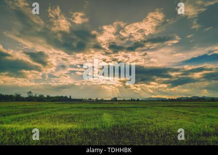 Natürliche Szene Himmel Wolken und Feld landwirtschaftlichen Sonnenuntergang Hintergrund - Stockfoto