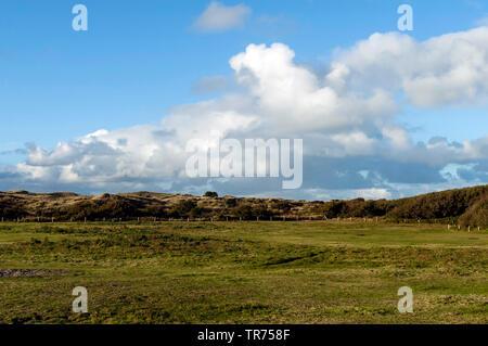 Eingezäunte Wiese mit bewölktem Himmel, Niederlande, Friesland, Vlieland - Stockfoto