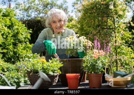 Portrait der älteren Frau Blumenerde Pflanzen im Garten zu Hause - Stockfoto