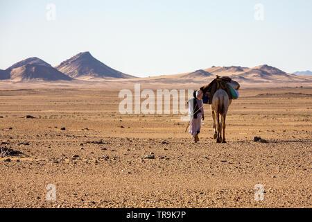 Eine Bisharan nomad Kamel herder Spaziergänge in die nubische Wüste neben seinem Kamel mit Bestimmungen geladen - Stockfoto
