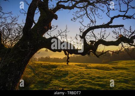 Schönen Sonnenaufgang im Tal - Stockfoto