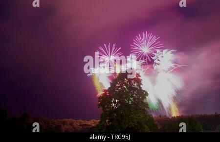 Feuerwerk an der Bristol Balloon Fiesta in Ashton, über eine Birke. August, 2018. - Stockfoto