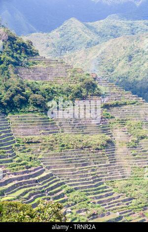 Batad Reis Terrassen, in der Nähe von Banaue, Philippinen - Stockfoto