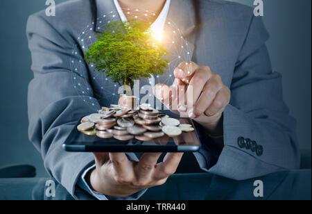 Hand Münze Baum der Baum wächst auf dem Stapel. Geld sparen für die Zukunft. Investment Ideen und das Wachstum des Unternehmens Hintergrund mit bokeh Sun - Stockfoto