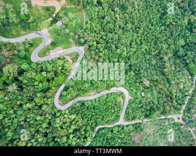Luftaufnahme von kurvigen Bergstrasse durch einen Dschungel - Stockfoto