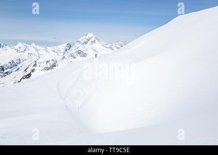 Backcountry skier Kreuze über einen großen Wind Gesims Schnee nähern Youngs Peak. Über ihn ist der große Berg Sir Donald des Glacier National Park, - Stockfoto