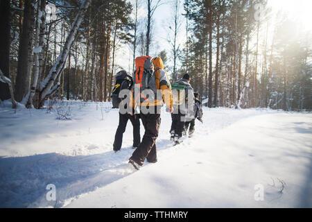 Ansicht der Rückseite des Wanderer Wandern im Schnee bedeckt Wald während der sonnigen Tag - Stockfoto