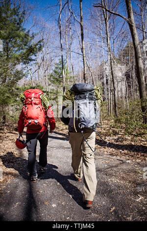 Rückansicht der Wanderer zu Fuß unterwegs im Wald - Stockfoto