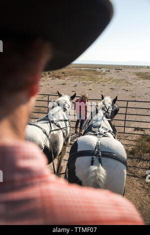 USA, Nevada, Brunnen, Cowboy und Wrangler Ton Nannini führt eine Horse-Drawn Wagen Fahrt am Mustang Monument, einer nachhaltigen Luxus Eco Resort und - Stockfoto