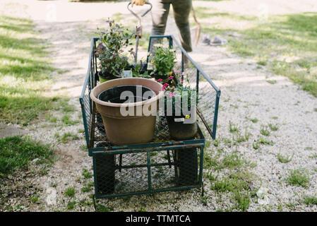 Niedrige Abschnitt von Frau ziehen Garten Wagen mit Topfpflanzen im Hof - Stockfoto