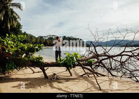 Ansicht der Rückseite des unbeschwerte junge Frau mit ausgestreckten Armen auf umgefallene Baum von Hund am Strand - Stockfoto