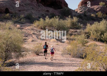 Ansicht der Rückseite des Wanderer mit Rucksäcken, die auf Feld während der sonnigen Tag - Stockfoto