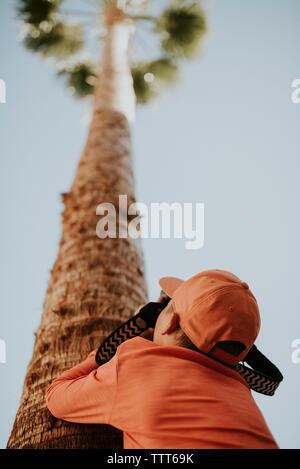 Ansicht der Rückseite des Teenager tragen Cap beim Fotografieren Palm Tree gegen den klaren Himmel - Stockfoto