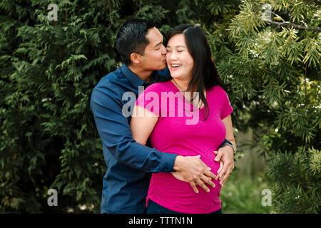 Liebevoller Mann küssen schwanger Frau gegen Filialen im Park - Stockfoto