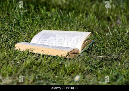 Buchen Sie auf grünem Gras in der schönen natürlichen Umgebung Öffnen, Schließen. Offenes Buch legit auf Gras. Sommer, Frühling Hintergrund mit offenem Buch. - Stockfoto