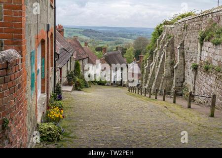 Hovis Gold Hill ein Blick von oben in Gold Hill in der hovis Junge auf einem Fahrrad Anzeige verwendet. Steilen gepflasterten Straße in der englischen Grafschaft Dorset - Stockfoto