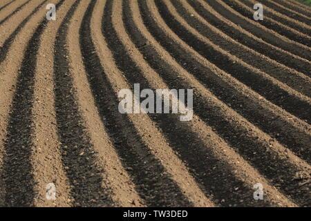 Parallele Reihen von einem frisch gepflügten Feld im Frühling - Stockfoto