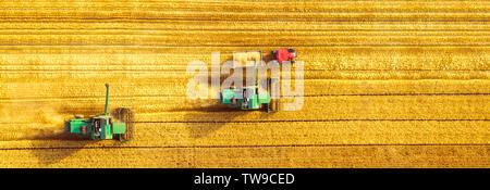 Feldhäcksler Landwirtschaft Maschine Mähdreschers der goldenen Reif Weizenfeld. Die Landwirtschaft. Luftaufnahme. - Stockfoto