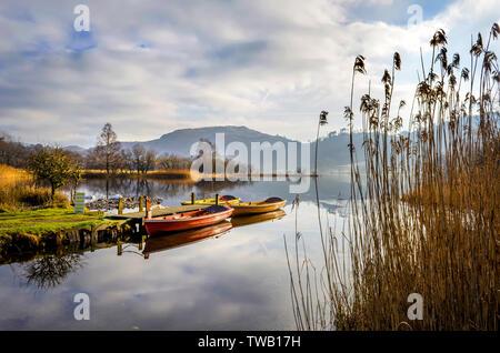 Drei Ruderboote in Ruhe an der Seite eines Sees mit der Wasserseite Schilf in den Vordergrund - Stockfoto
