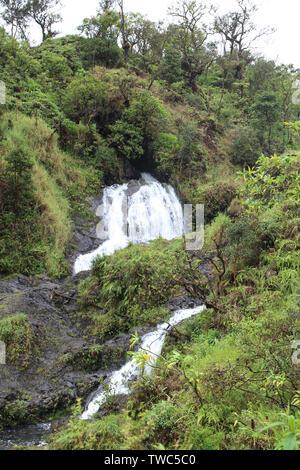 Eine doppelte Wasserfall Cascading, einem vulkanischen Hügel in einem Regenwald auf dem Weg nach Hana auf Maui, Hawaii, USA - Stockfoto