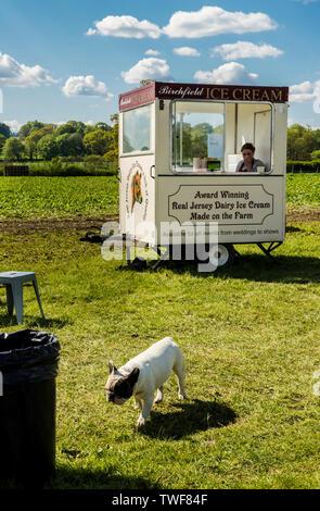 Eis Warenkorb im Feld- und Hund zu Fuß im Vordergrund an der Ripley dekorative Home und Bergung in Ripley in North Yorkshire. - Stockfoto