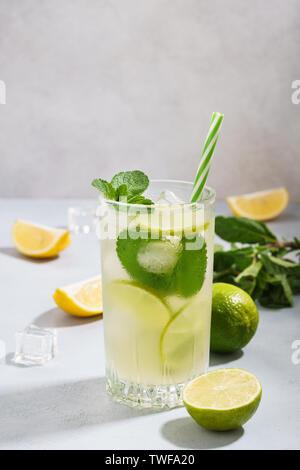Kalte Limonade mit in Scheiben geschnittenen Zitrone, Limette und Minze in ein Glas. Erfrischendes Getränk für den Sommer. Mit natürlichem Licht gedreht. Kopieren Sie Platz. - Stockfoto