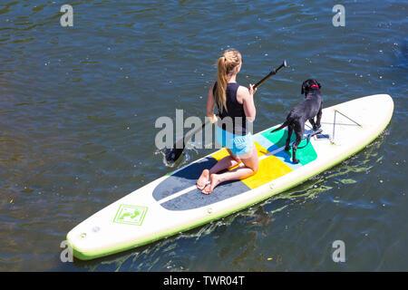 Iford, Dorset, Großbritannien. Am 22. Juni 2019. Perfektes Wetter, warm und sonnig, noch für Dorset Beiboot Tag mit Hunderten von Schlauchboote, Faltboote, Handwerk, Platten bilden eine Flottille Segeln von iford Brücke, den Fluss Stour zu Tuckton Brücke. Die Veranstaltung begann im Jahr 2014 als ein wenig Spaß, aber hat jetzt eine jährliche Veranstaltung Geld für Nächstenliebe und Getter jedes Jahr größer geworden. Frau paddleboarder Paddel Boarder mit Hund auf dem paddleboard Paddle Board. Credit: Carolyn Jenkins/Alamy leben Nachrichten - Stockfoto