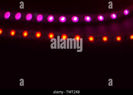 Zwei Linien der rot und lila Neonlicht auf Schwarz. - Stockfoto
