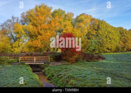 UK, Somerset, Steg und Stream von Mangold Naturschutzgebiet - Stockfoto