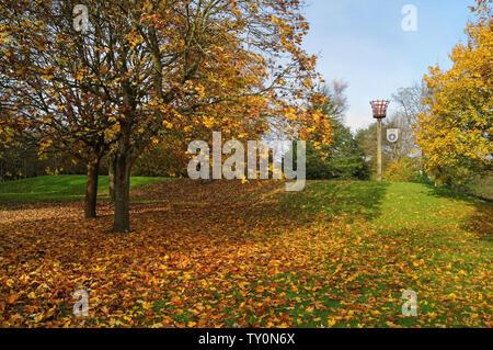 Großbritannien, Somerset, Mangold, Mitchell Gärten und Mangold 750 Beacon - Stockfoto
