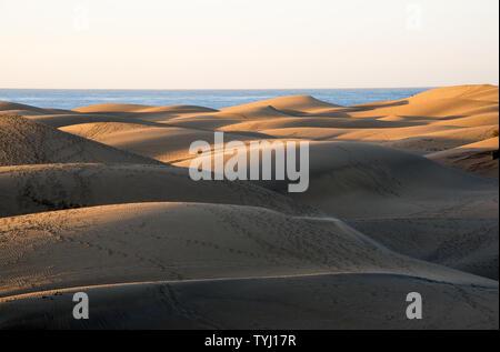 Die Dünen von Maspalomas, Kanarische Inseln, in den frühen Morgenstunden mit Blick auf den Ozean - Stockfoto
